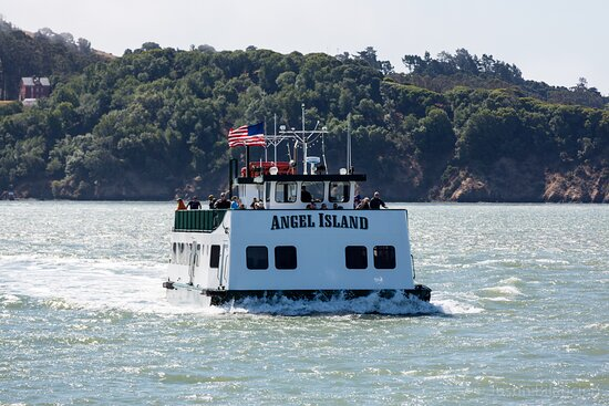 """Tiburon, CA: The ferry """"Angel Island"""" was designed by Milton McDonogh, 3rd generation owner/operator. She is a unique vessel that is flat bottomed and can hold 400 passengers."""