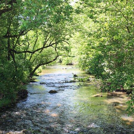 Church Hill, TN: Jaycee Park 100 old mill dr