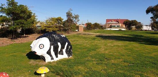 Yorketown, أستراليا: Weaners Flat Reserve Yorketown SA  artwork on front lawn