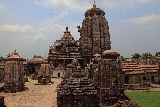 Bhubaneshwar to Nagpur - Temples, Tribal Villages and Tiger Safari