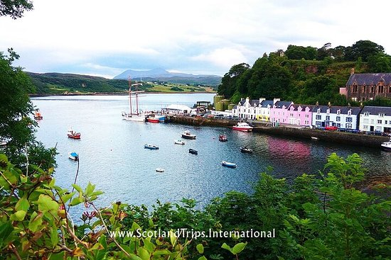 TOUR ALL THE FLAVORS OF SCOTLAND & SKYE! 5 days + 4 nights.