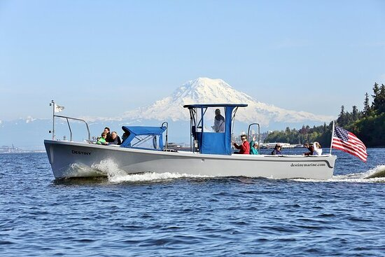Tour guidato in barca di 2 ore a Gig Harbor e Narrows Bridges