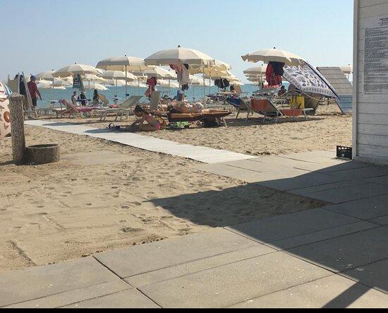 Scoby Doo Beach - Stabilimento Balneare Per Cani