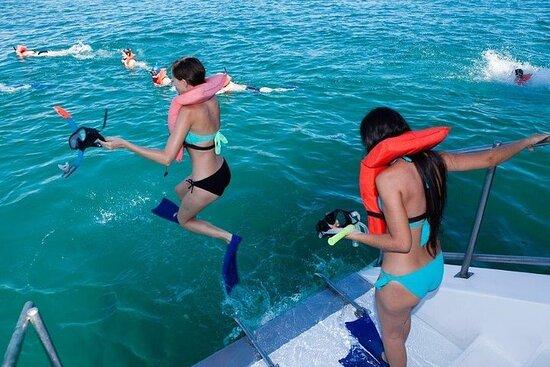 すべてのカボのシュノーケル&ボートツアー。フードとオープンバーが含まれていま…