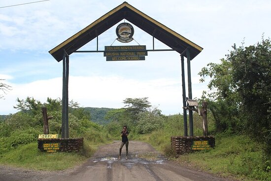 Tour at Arusha National Park