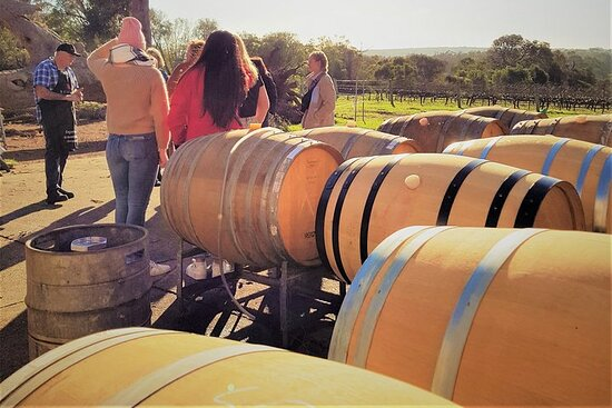 5 Hours Wineries, Coffee Tasting, Forest & Lunch at the Berry Farm