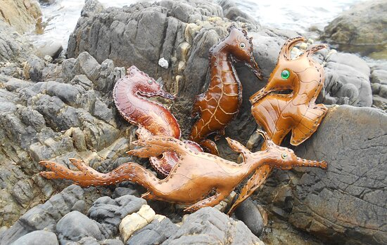 King Island, Australien: Various Seahorse designs and Leafy Sea Dragon made from Bull Kelp.