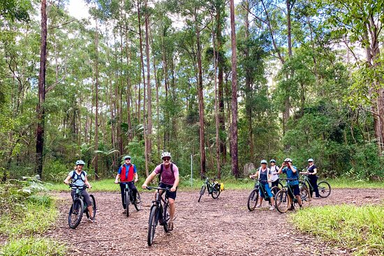 Beyond Byron E Bike Tours - Mullumbimby