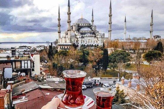 Best-seller; Excursion privée à terre à Istanbul