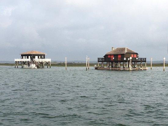 Office de Tourisme de Gujan-Mestras