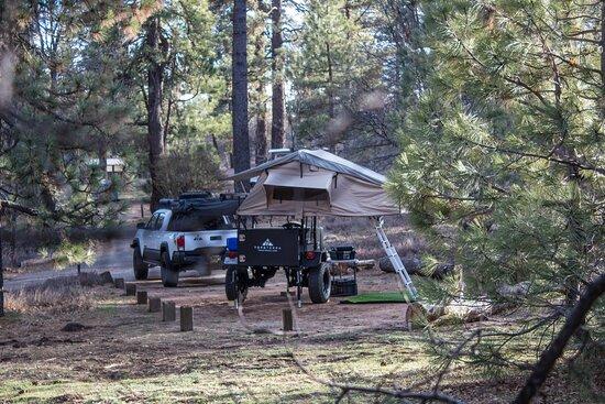 Mount Laguna, كاليفورنيا: Tacoma & Scout trailer