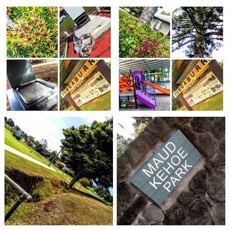 Maude Kehoe Park,yungaburra,qld
