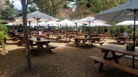Portola Valley, CA: Patio and socially distanced