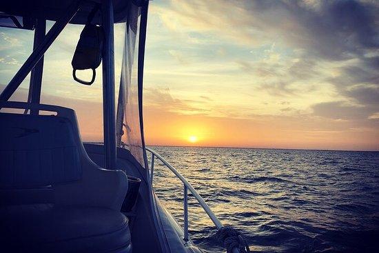Reel Runner Gulf Adventures-Beach Excursions