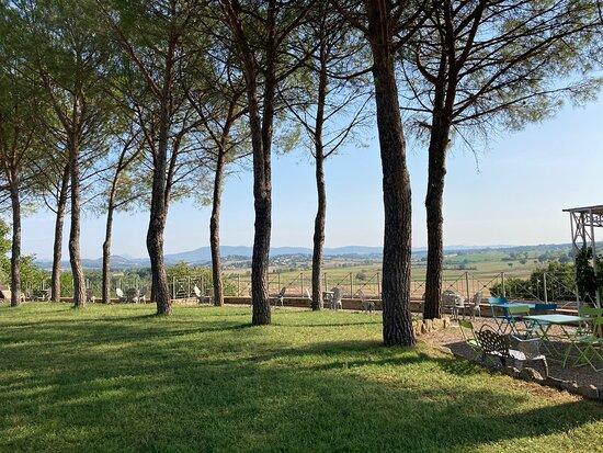 Castiglione della Valle Photo