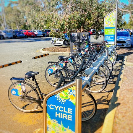 Spinway Bike Hire Station Kings Park