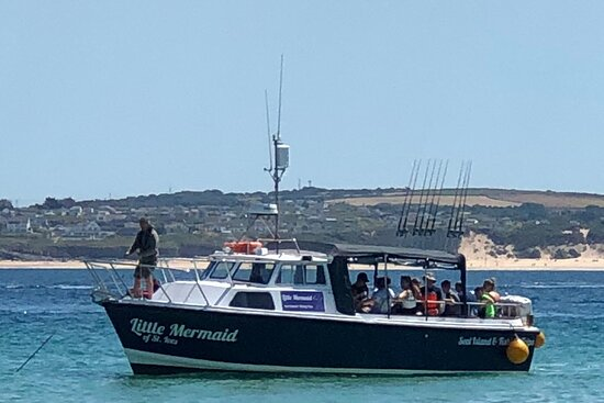 The Little Mermaid ~ St. Ives Sea Trips