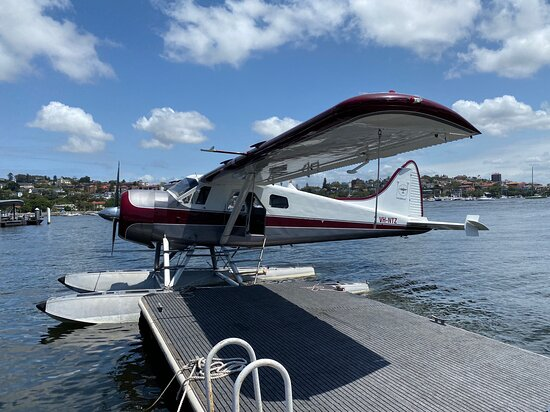 Gourmet Lunch at Jonah's by Seaplane from Sydney: The plane