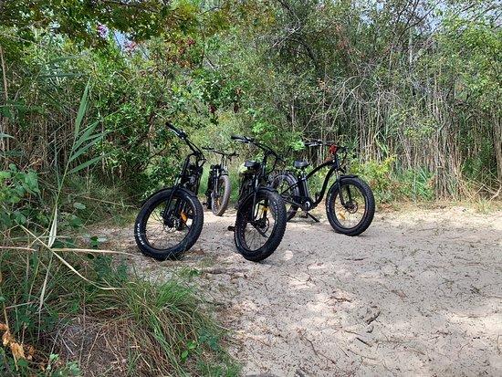 Les Vélos Du Lac