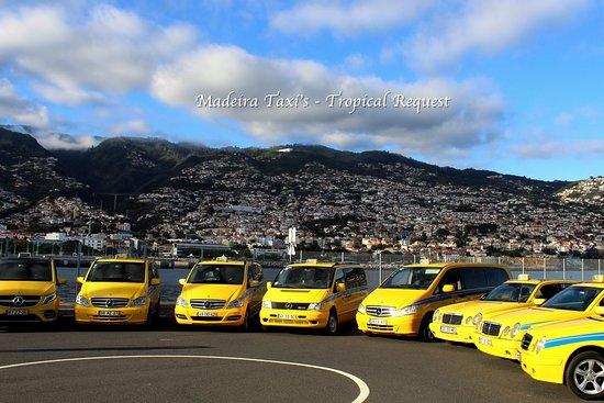 Tropical Request - Madeira Taxi