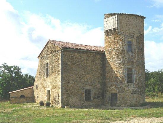 Chateau de Chamousseau