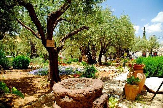 4-Day Christian Tour from Tel Aviv...
