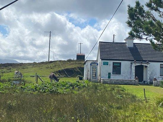 Inishbiggle Island Ferry Service