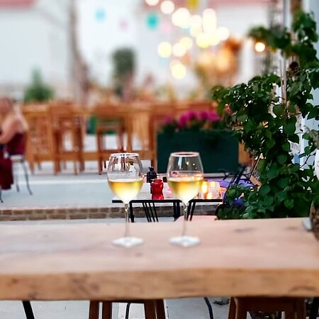 Vena Wine House