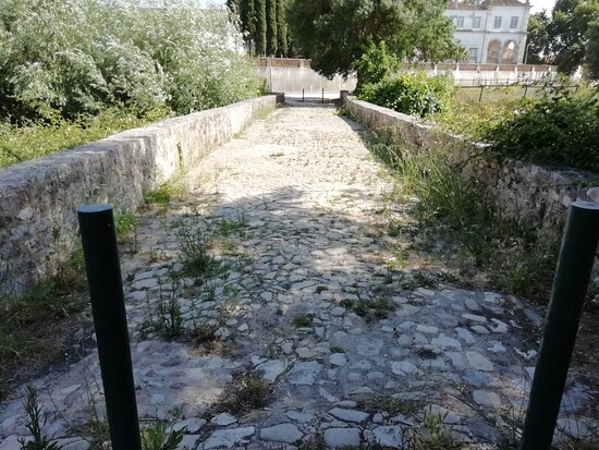 Ponte Romana De Muge