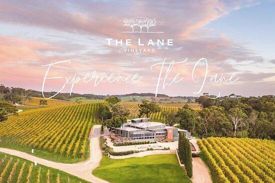 The Lane Vineyard - Experiences