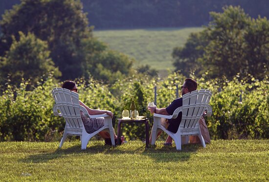 Windridge Vineyards