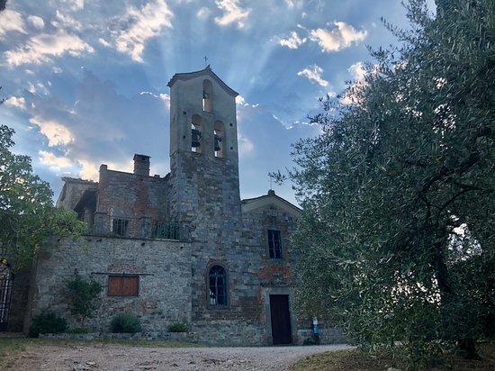 Province of Arezzo, إيطاليا: Près de La Laterina 
