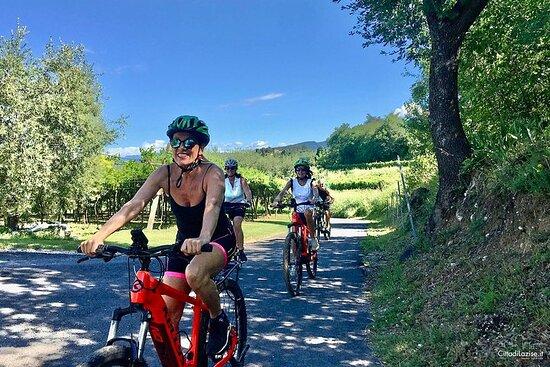 Sykkeltur mellom vingårdene og vinsmaking i Lazise
