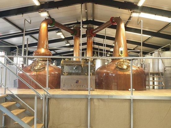 IrishAmerican Whiskeys