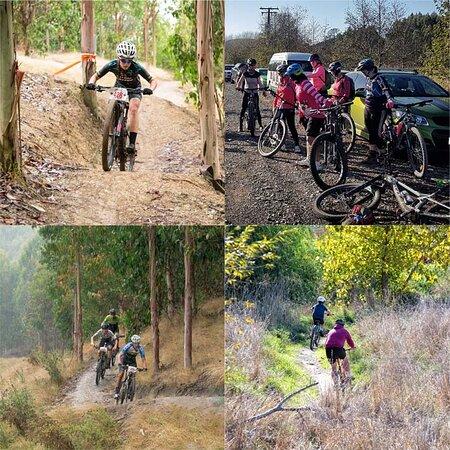 The Tukituki Trail