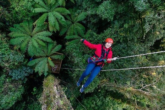 Adventure and Cultural Tours Bay of Plenty