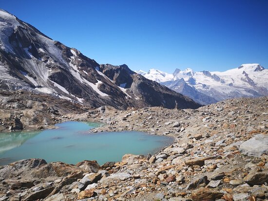 Bergbhnen Hohsaas