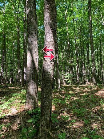 Hiking trail  at Attitash resorts