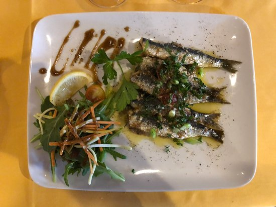 Sardine ceviche