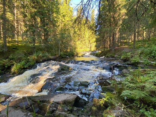 Waterfall Valley Wildlife Park