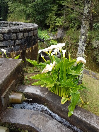 waterkanaaltje
