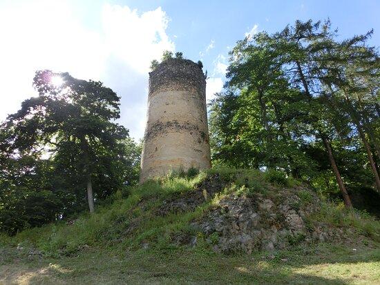 Hrad Rýzmburk U Oseka