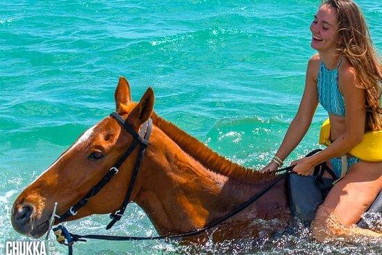 Chukka Horseback Ride & Swim Guided Adventure Tour
