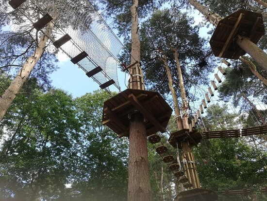 Go Ape Coventry