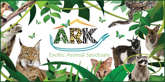 Ark Wildlife Park & Exotic Animal Sanctuary