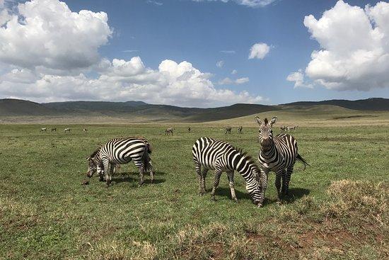 Foto Kilimanjaro National Park