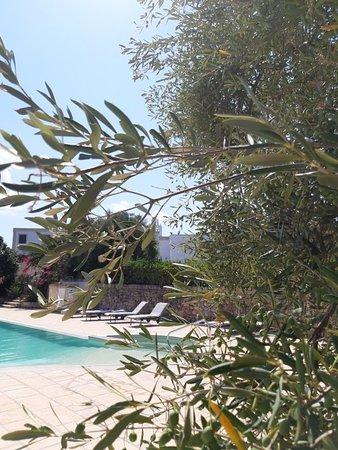 Masseria San Martino Hotel Pezze Di Greco Puglia Prezzi 2021 E Recensioni