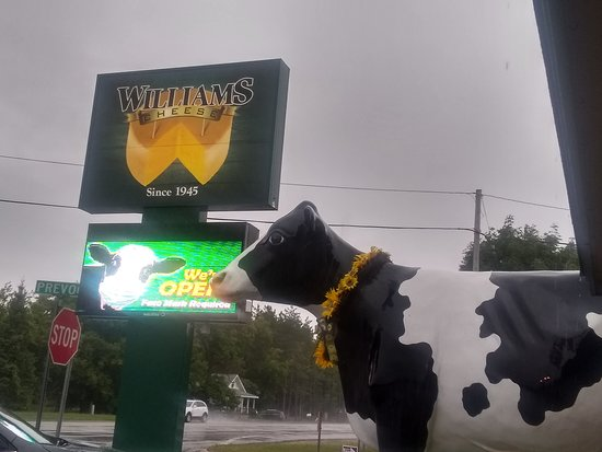 Williams Cheese Factory Outlet