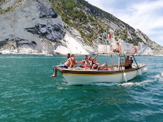 Hippocampus Boat