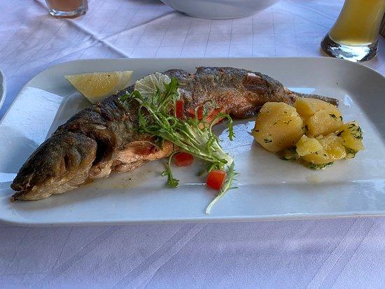 Sehr gutes Essen mit lokalem Fisch